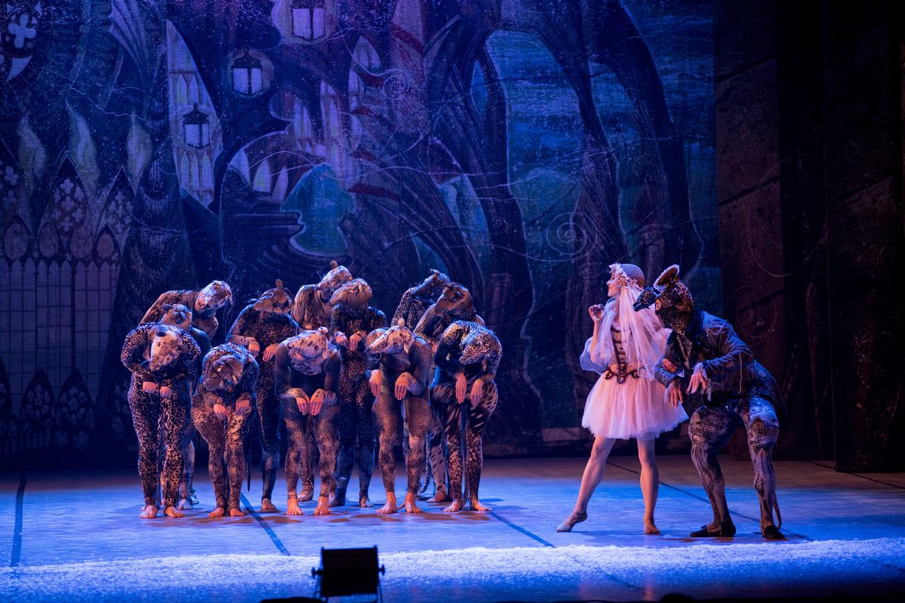 ТЕАТР Kyiv Modern Ballet. Щелкунчик. Раду Поклитару-10