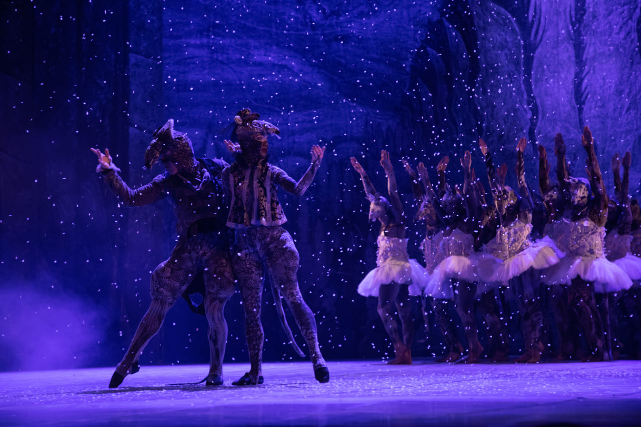 ТЕАТР Kyiv Modern Ballet. Щелкунчик. Раду Поклитару-3