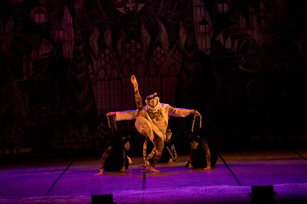 ТЕАТР Kyiv Modern Ballet. Щелкунчик. Раду Поклитару-7