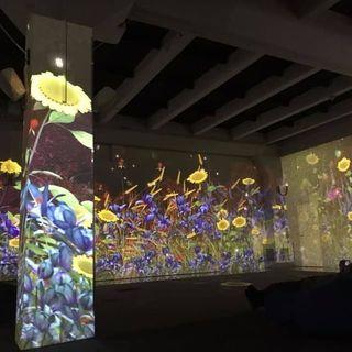 CONCERTS «Джаз-Поп-Рок» симфо-драйв шоу з відео-артом у просторі ARTAREA-6